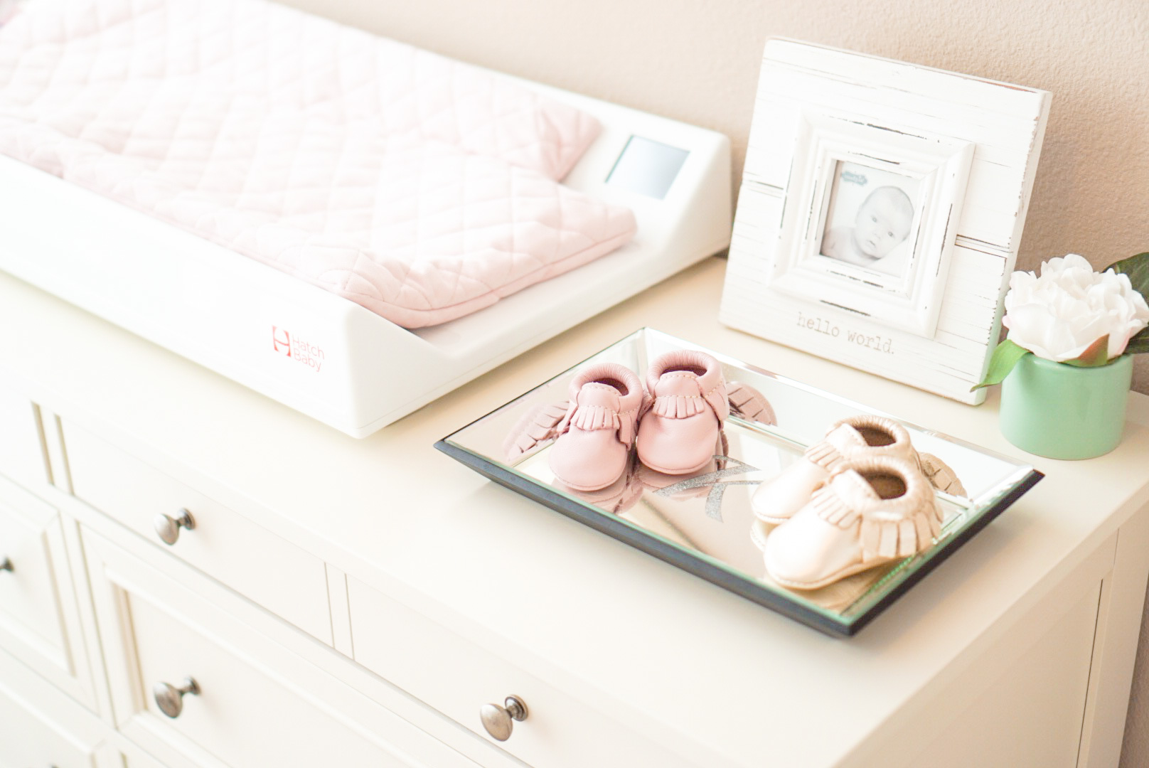 Blogger Katelyn Jones A Touch of Pink Nursery Freshly Picked
